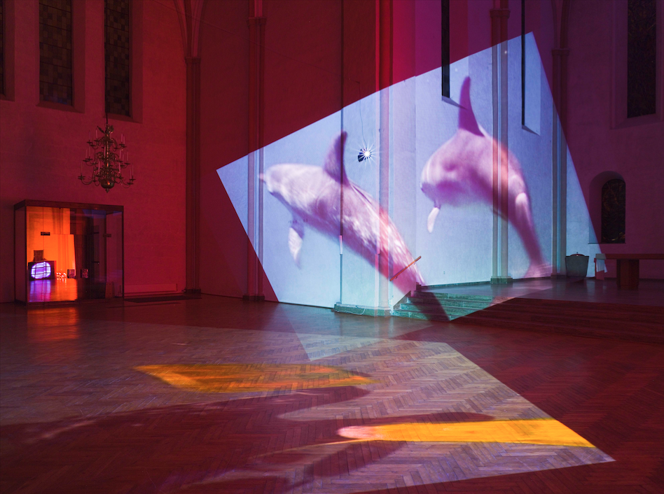 Diana Thater, Delphine (1999). Four video projectors, five players, nine-monitor video wall, and Lee filters, dimensions variable. Image courtesy of the artist. Photo: Roman Mensing.